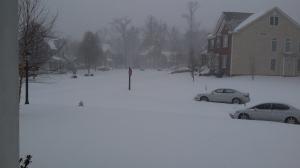 2016 blizzard2
