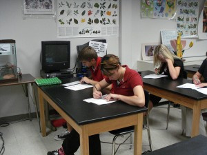 Students taking a test--image by biologycorner