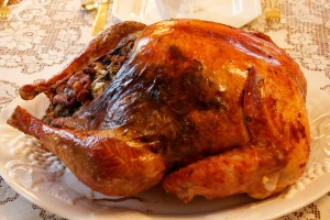 Thanksgiving Turkey--Image by